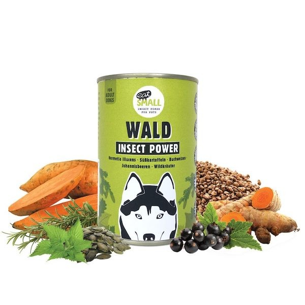 WALD |Insect Power