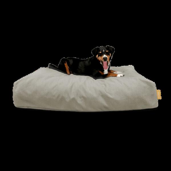 "BUDDY. dog bed ""Jumbo"" |Beach"