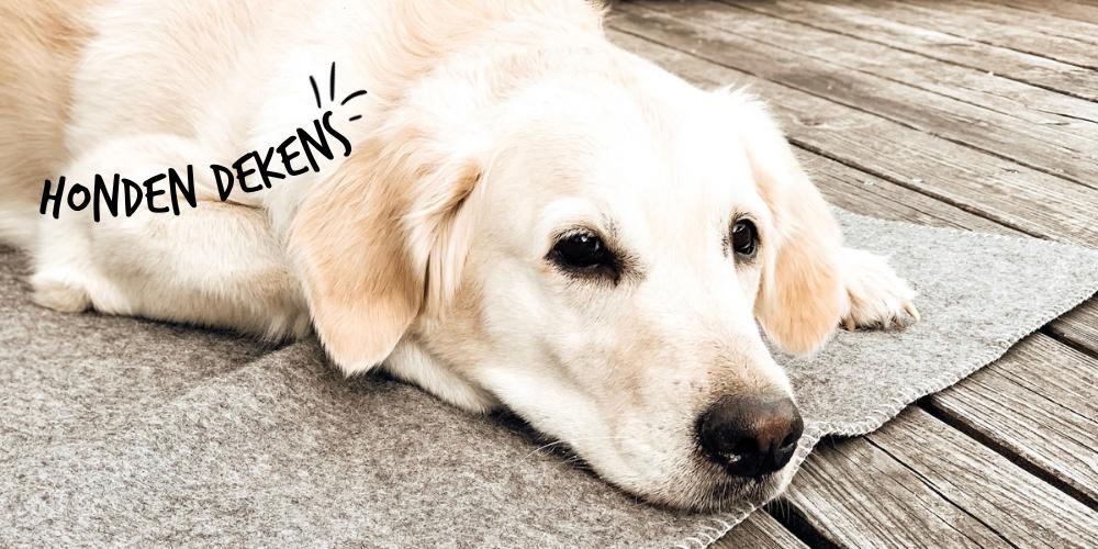 Lills_Honden_-Hondendekens