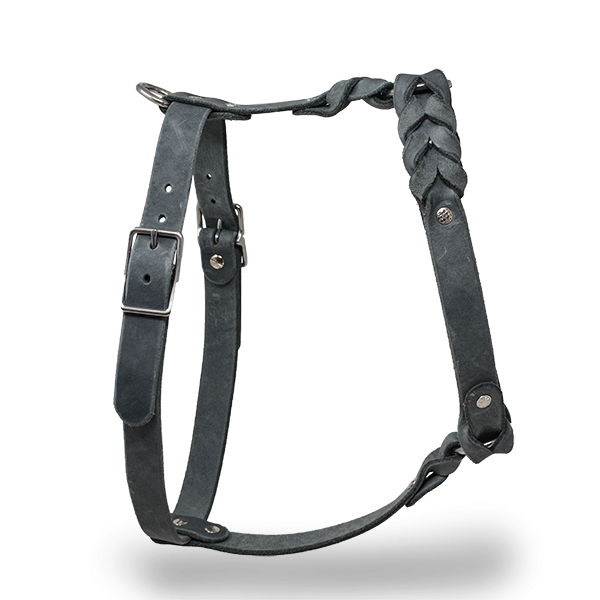 Leather dog harness | Dark brown