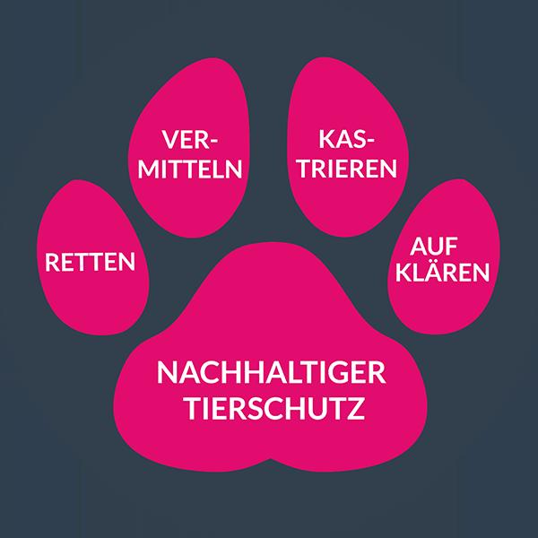 Hunderettung-Europa-nachhaltiger-Tierschutz-Pfote