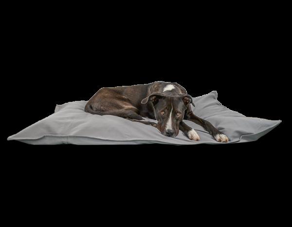 Dog cushion 'CLARA' |light grey