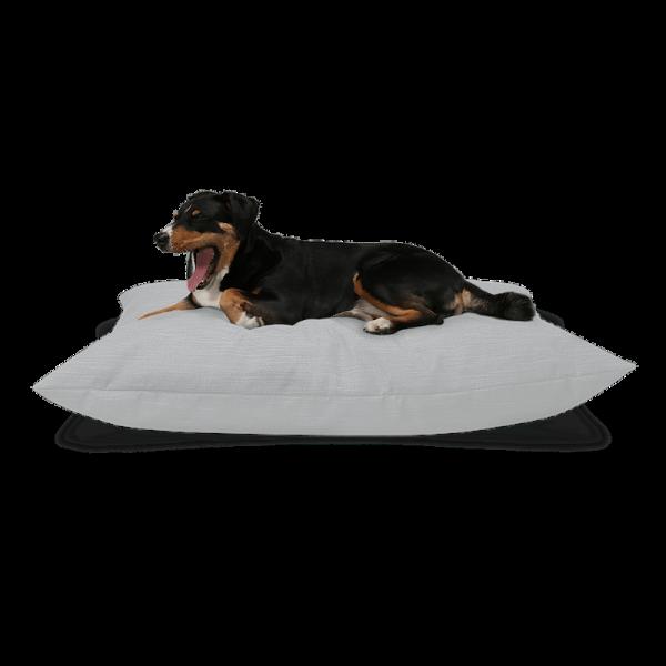 "BUDDY. dog cushion ""Pure"" |Stone"
