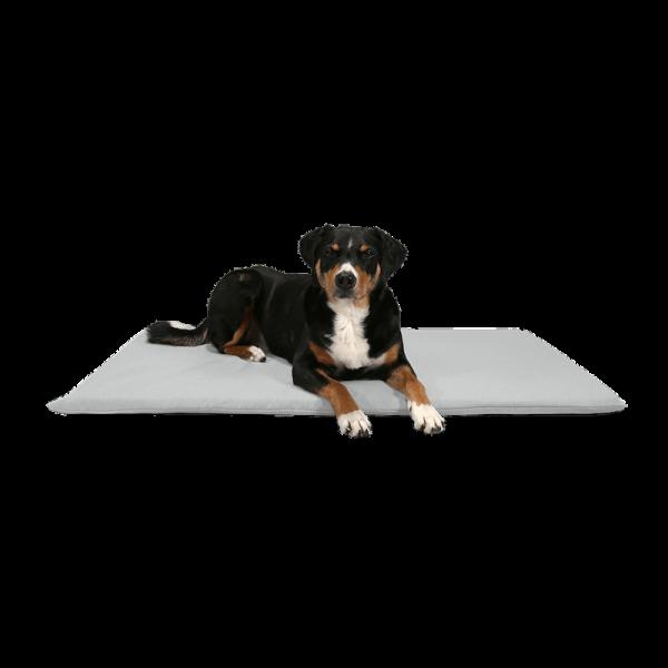 "BUDDY. dog mat ""Matt"" |Stone"