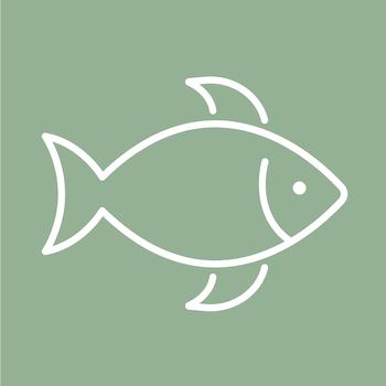 """Fisch"""