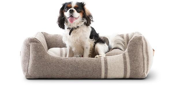 HENRI - Hundebett aus recycelter Wolle | weiss